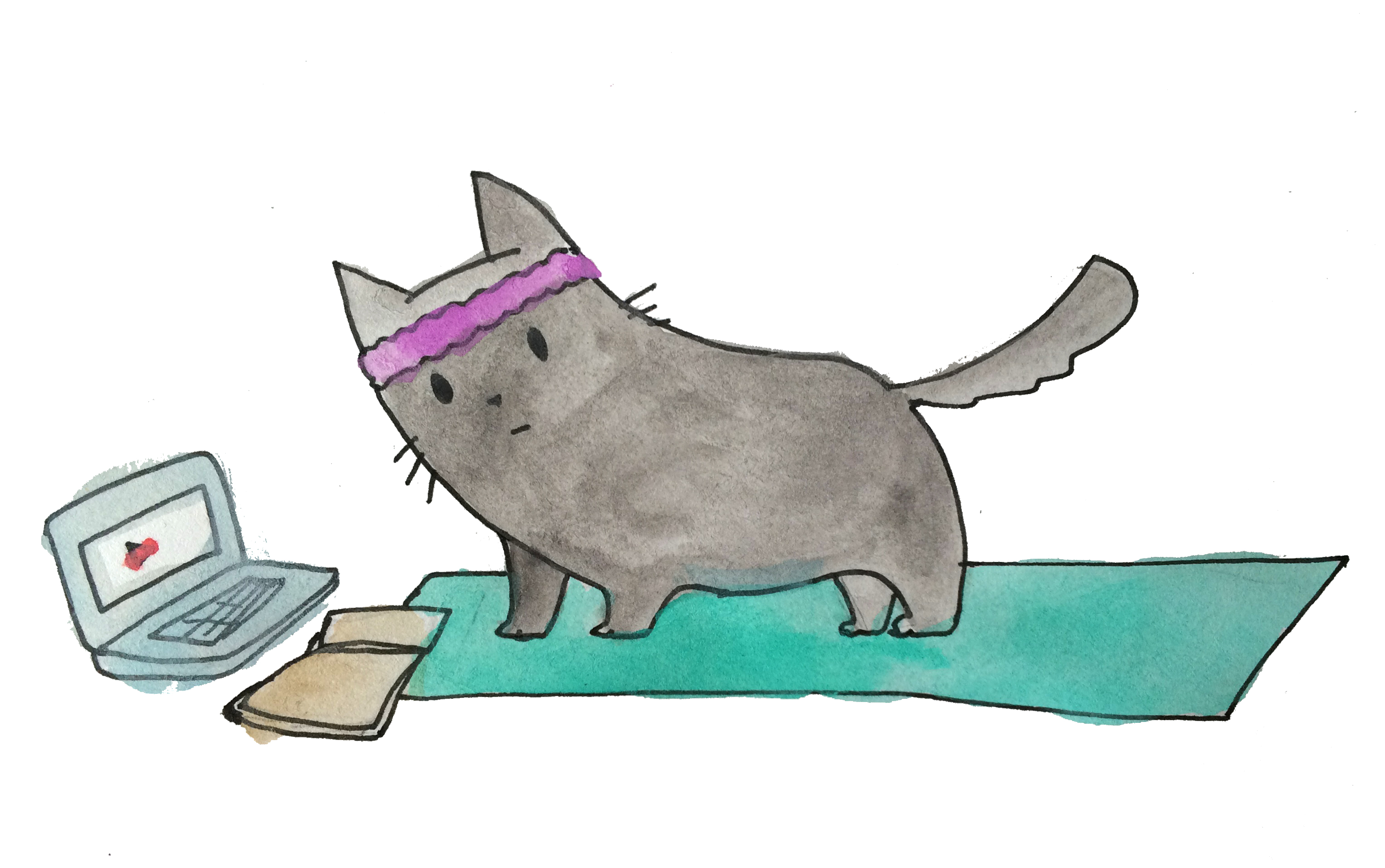 Yoga Cat Researches