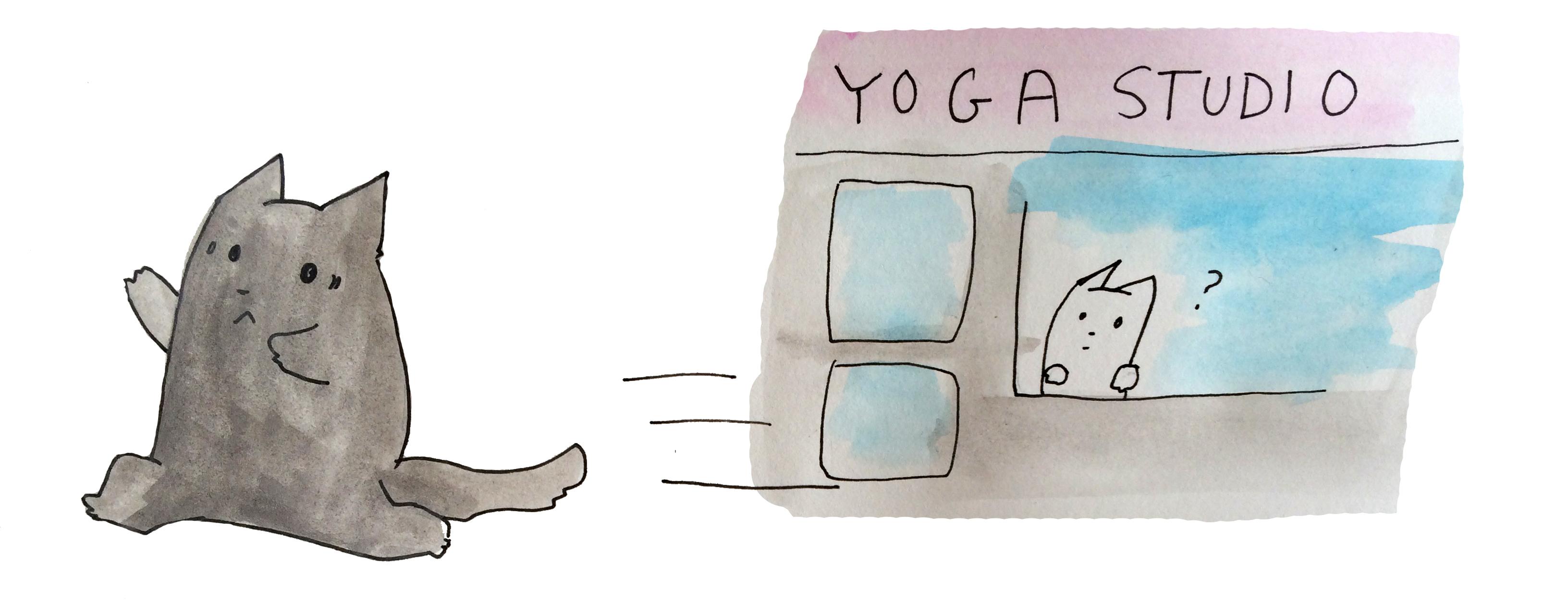 Yoga Cat Runs from Yoga Studio