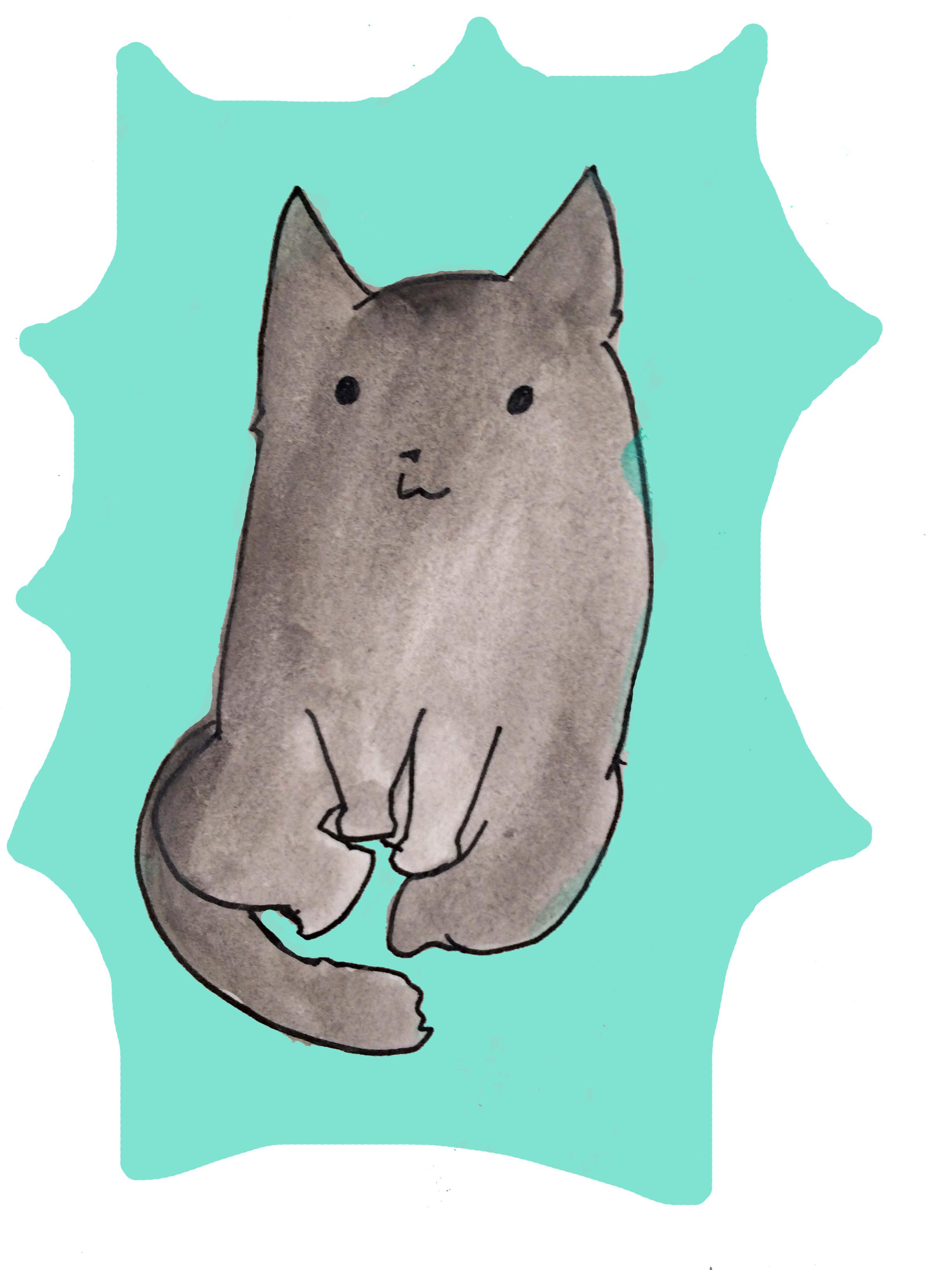 Yoga Cat Feeling Whole